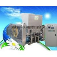 China Newest double-head biomass briquette press wholesale