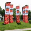 Quality Block flags Custom block banners for sale