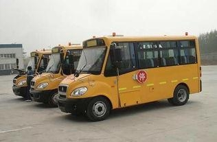 Quality Bus 40 -60 SeatS HOWO School Bus for sale