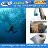 China waterproof glossy pp synthetic paper for inkjet printing wholesale