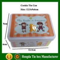 China Cookie biscuit tin box High qulity Professional Manufacturer collectible tin boxes on sale