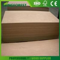 China Plywood 2mm to 30mm finnish birch plywood with great price on sale