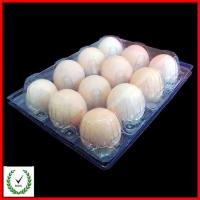 China 12 Cells Egg Tray plastic deviled egg tray 12 Cells Egg Tray on sale
