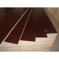 China Red film faced plywood wholesale