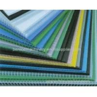 China hot sell PC, PP, PE, PVC Hollow Grid Board Production Line wholesale