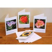 China Floral Birthday (4 pack) wholesale