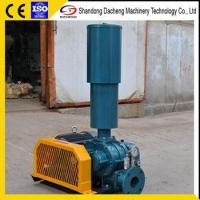 China DSR100V China supercharger used in blower wholesale
