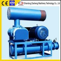China DSR100 Durability Dissolved Air Flotation Roots Blower with Easy Maintenance wholesale