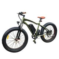 26 fat tire Beach electric bicycle