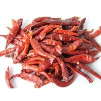 China New Crop Premium Dry Chili Red Pepper and Paprika Whole Pepper on sale