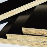China 2016 year 25mm best price commercial plywood on sale
