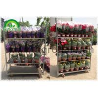 China Flower Cart wholesale