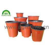 China Plant Pot wholesale