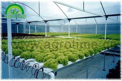 Quality DFT Hydroponic for sale