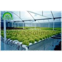 China DFT Hydroponic wholesale