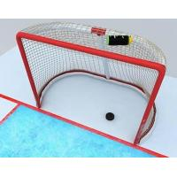 China Goal Netting for Training and Matches wholesale
