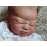 Buy cheap I Art Ultra Newborns Tutorial DVD with Cassie Brace from wholesalers