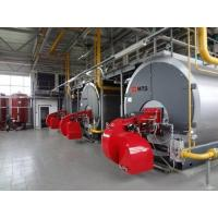 China Condensing gas&oil fired boiler on sale