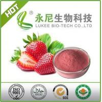 China Top Quality Strawberry Fruit Flavour Powder wholesale