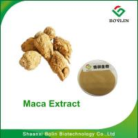 China Maca Extract Benefits for Men/Bolin Supply Pure Natural Maca Extract Powder with Best Quality on sale