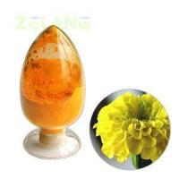 China Tagetes Extract Lutein 20% wholesale