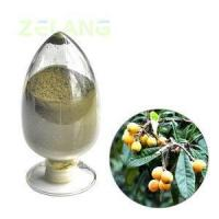 China Ursolic Acid 50% Loquat Leaf Extract wholesale