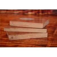 Quality 1/2 Inch Phenolic Board Faced Eucalyptus Hardwood Plywood Sheets for sale