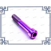 China Titanium Bolt / Screw / Nut / Screw/nail/cap for Sale wholesale