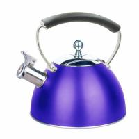 China factory supply kitchenware stainless steel kettle with whistling outlet wholesale