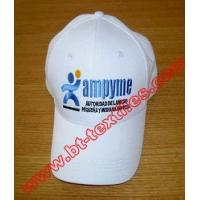 China Caps & hats baseball cap13 wholesale