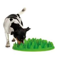 China Pet Accessories PET-INT-FEED-SM wholesale