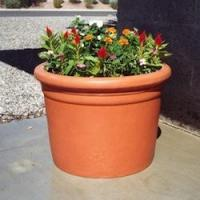 China Plastic Planters Plastic Straight Sided Cylinder wholesale