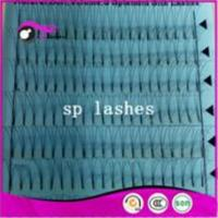 China Makeup W Pre Made Russian Volume Lashes Fans 3D Eyelash Extensions wholesale