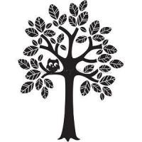 China Trees Tree Wall Decal wholesale