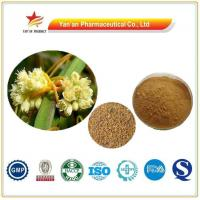 China Natural Herb Chinese Dodder Seed Extract/ Semen Cuscutae P.E. wholesale