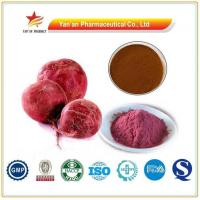 China Herbal Red Beet Root Extract Betanin wholesale