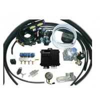 China CNG Conversion Kits Australia for 4 Cylinder for Lexus on sale