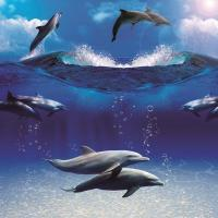 China Lovely Dolphins 3D Painting Fireproofing Cork Sofa Backdrop wholesale