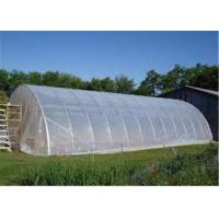 China Clear Plastic Sheet Roll Anti Fog / Mulch Jumbo Rolling Plastic Cover For Greenhouse on sale