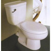 Buy cheap Toilet TR111 from wholesalers