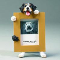 China Dog Picture Frame - Bernese Mountain, Small wholesale