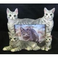 China Cat Picture Frame - Silver Tabby Cats wholesale