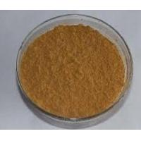 Buy cheap Dodecylbenzenesulphonic acid 27176-87-0 from wholesalers