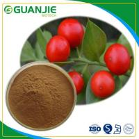 China Butcher's Broom P.E Ruscus Aculeatus Extract Hot Sale Ruscogenin Powder L Hot Sale And Sample Free wholesale