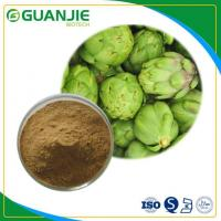 China Artichoke Extract/Cynarin Powder Sample Free With Best Quality And Competitive Price on sale