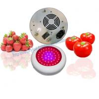 China 135 Watt LED Grow Light Full Spectrum wholesale
