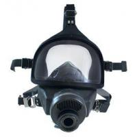 China Agricultural Supply MSA Gas Mask wholesale