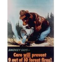 """China Poster of Smokey the Bear Putting Out a Forest Fire """"Care Will Prevent 9 Out of 10 Forest Fires!"""" wholesale"""