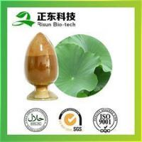 China Lotus Leaf Extract Can Regulate the High Blood Pressure, Promote Blood Circulation wholesale
