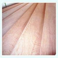 China Commercial plywood KERUING PLYWOOD wholesale